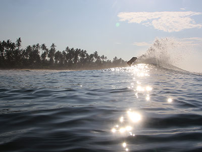 meditation as an aid to surfing